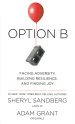 Cover art for Option B