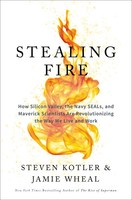 Cover art for Stealing Fire